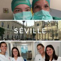 Nos étudiants en Eramus à Séville
